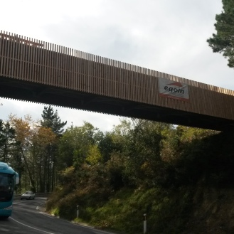 Pasarelas y Puentes